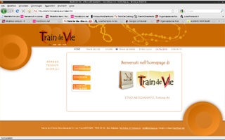 <em>Train de Vie </em>website