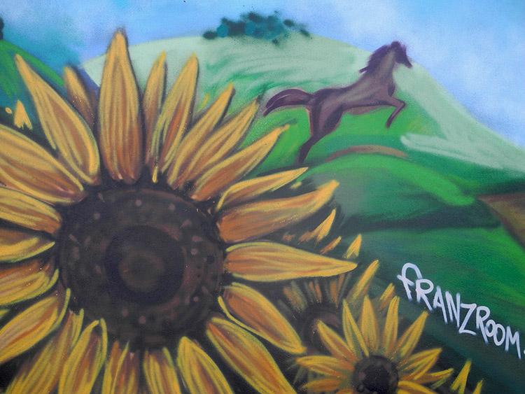 Dettaglio Spaesato della decorazione su cabina Enel a Capriata d'Orba - Andrea Franzosi, franZroom.net
