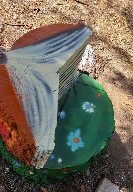 LibrO, decorazione su troncO - franZroom.net