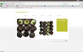 <em>Anna Ghisolfi</em> website