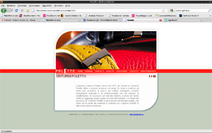 <em>Poletto</em> website
